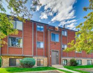 313 West Lehow Avenue Unit 14, Englewood image