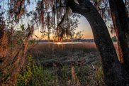 3940-1 Chisolm Road, Johns Island image