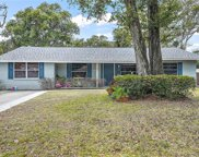1161 Little John Court, Mount Dora image