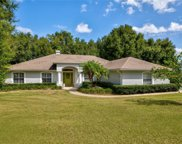 16635 Pine Timber Avenue, Montverde image