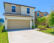 7405 French Marigold Avenue, Tampa image
