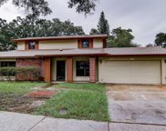 1919 Beckett Lake Drive, Clearwater image