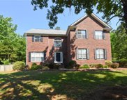 10124  Hanging Moss Trail, Mint Hill image