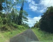 16-1547 38TH AVE, Big Island image