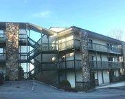 1102 Ski View Dr #208, Gatlinburg image