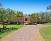 4256 Silver Fox Dr, Naples image