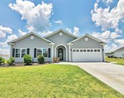 195 Vineyard Lake Circle, Conway image
