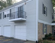 420 Manor Court Unit D, New Lenox image