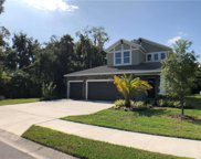 7313 Mill Hopper Court, Palmetto image