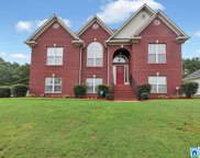 595 Woodland Cir, Odenville image