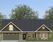 459 Silver Thorne Dr - Lot 17, Wellford image