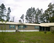 1068 SW WILSON SPRINGS ROAD, Fort White image