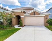 16343 Hyde Manor Drive, Tampa image