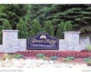 LOT 5 Oak Shore, Green Oak Twp image