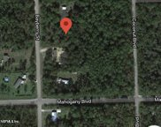 1439 BAYBERRY ST, Bunnell image