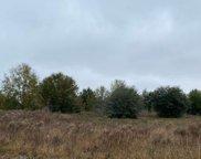 162ND TRACE, Live Oak image