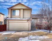 3574 Primrose Lane, Castle Rock image