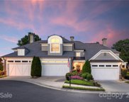 7909 Greenview Terrace  Court, Charlotte image