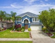 14509 Weeping Elm Drive, Tampa image