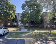 1489 North Winslowe Drive Unit 201, Palatine image