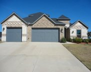 1124 Indigo Creek Way, Gunter image