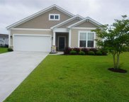 1072 Caprisia Loop, Myrtle Beach image