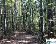 Summit Park Rd Unit 7.94 Ac, Odenville image