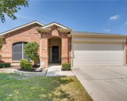 10417 Donnis Drive, Fort Worth image