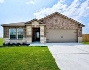 13600 Henry A. Wallace Ln, Manor image
