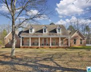 341 Red Maple Dr, Columbiana image