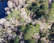 10557 Lake Iamonia, Tallahassee image