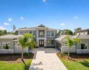 10435 Woodward Winds Dr, Orlando image