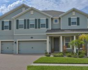 19003 Roseate Drive, Lutz image