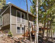 31217 Kings Valley, Conifer image