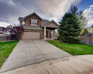 3913 Miners Candle Court, Castle Rock image