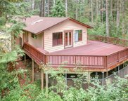 42744 SE 168TH Place, North Bend image