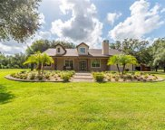 6813 S Fork Ranch Drive, Clermont image