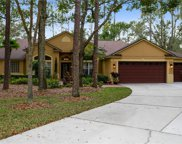 314 Pinestraw Circle, Altamonte Springs image