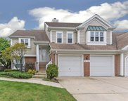 353 Covington Terrace, Buffalo Grove image