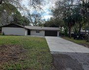 9508 W Cluster Avenue, Tampa image
