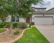 10609 Pictorial Park Drive, Tampa image