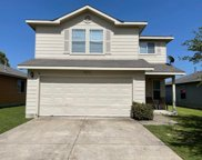 13013 Jelly Palm Trail, Elgin image