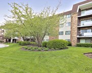 3300 North Carriageway Drive Unit 203, Arlington Heights image