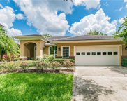 9321 Cypress Bend Drive, Tampa image