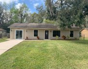 3426 Silver Palm Drive, Edgewater image