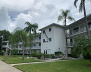 8402 111th Street Unit 205, Seminole image