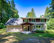 16737 235th Ave SE, Issaquah image