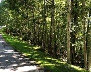 300 Cedar Rock  Trail Unit #362, Hendersonville image