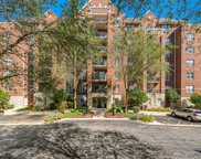 440 West Mahogany Court Unit 609, Palatine image