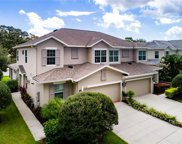 4725 Osprey Ridge Circle, Palm Harbor image